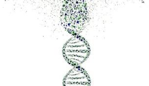Genetyka - co nowego?