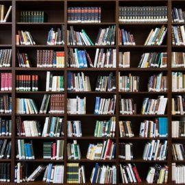 Badanie: polscy przedstawiciele nauk społecznych i humanistycznych publikują na potęgę