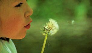 Zdrowia, szczęścia, pomyślności